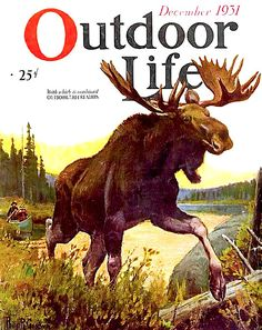 Vintage Outdoor Life Magazine December 1931 with Moose illustration on the cover. Hunting Magazines, Fishing Magazines, Old Magazines, Vintage Advertisements, Vintage Ads, Vintage Posters, Hunting Art, Hunting Stuff, Hunting Tips