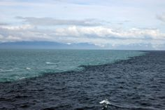 Skagen is the northernmost point of Denmark, where the Baltic and North Seas meet. The two opposing tides in this place can not merge because they have different densities.