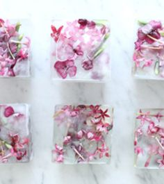 We've been looking for an excuse to make floral ice cubes for a while. When we decided to host a Pink Party for Breast Cancer Awareness Month, it seemed like the perfect time to give it a whirl. Floral ice cubes will jazz up any water glass and will be something special that your guests …