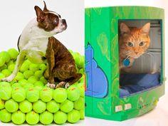 Reaproveite materiais para fazer camas confortáveis para animais de estimação