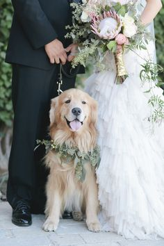 Love this shot! Get a copy of Hampton Roads Wedding Guide www.hrweddingguide.com