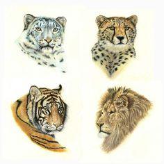 Big Cats Prints, lion, tiger, cheetah, snow leopard
