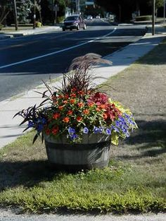 Idea for my barrel planting Container Flowers, Flower Planters, Container Plants, Container Gardening, Outdoor Flowers, Outdoor Planters, Outdoor Gardens, Whiskey Barrel Planter, Whiskey Barrels