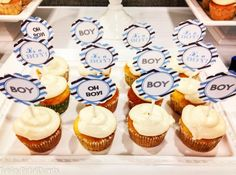 Paisley Petal Events free printable baby boy cupcake toppers