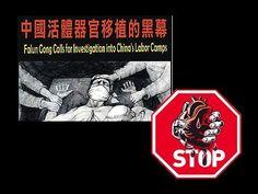 器官活摘移植黑幕_您不知道的中國國營器官移植手術生意內幕【中文版】