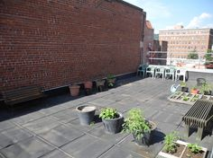 Lark's rooftop garden and projects for your urban outdoor space