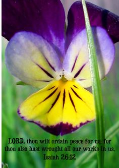 <3 <3 Isaiah 26:12 King James Version (KJV) 12 Lord, thou wilt ordain peace for us: for thou also hast wrought all our works in us.
