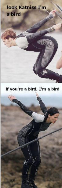"""""""What bird are you Finnick, cause I'm a mockingjay!""""  """"Well I think I'm a sea gull, cause I'm from district 4 and I like french fries!"""""""