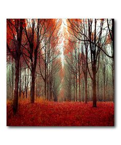 SO gorgeous!!!! Take a look at this Red Forest Canvas Wall Art by COURTSIDE MARKET on #zulily today!