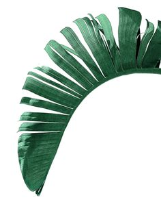 Banana leaf poster by NORDIK #bananaleaf #palmleaf #leaf #botanical #tropical #art #wallart #print #prints #decor #trend #green #poster