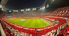 Bayern Munich fans inside the Allianz Arena.
