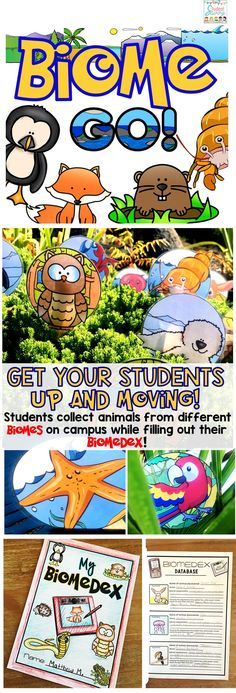 What a fun way for students to learn about biomes and animal adaptations!What a fun way for students to learn about biomes and animal adaptations! Science Resources, Science Lessons, Science Education, Science Activities, Science Projects, Life Science, Physical Activities, Earth Science, Physical Education