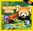 2014 NGS Kids Almanac Wall Calendar