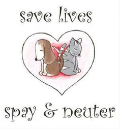 Save Lives - spay and neuter! The best way to help end the pet overpopulation problem is to spay and neuter your pets!