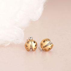 Gold Beetle Stud Earrings