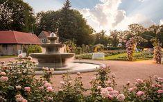 Kaskadenbrunnen im Ostdeutschen Rosengarten Forst Lausitz