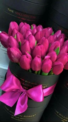 Million Roses flower box with pink tulips.