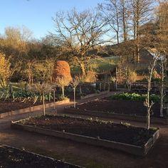 arne-maynard-kitchen-garden-design-gardenista