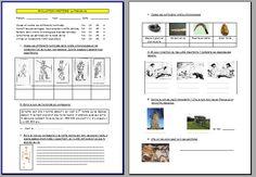 Evaluation histoire cycle III : mesure du temps