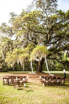 35 best charleston sc wedding venues images on pinterest county chairs for wedding at mullet hall equestrian center at johns island county park south carolina junglespirit Choice Image
