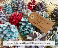 Pinecone Fire Starters make wonderful homemade Christmas presents. Shouting cosy evenings in front of the fire. Perfect as Christmas decorations too. Homemade Christmas Presents, Handmade Christmas, Christmas Gifts, Christmas Decorations, Pinecone Fire Starters, Pine Cones, Elf, Gift Ideas, Travel