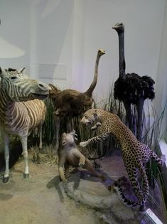Antipa Museum Bucharest  #museum #antipa Travel Around Europe, Travel Around The World, Around The Worlds, Bucharest, Giraffe, Museum, Adventure, Animals, Instagram