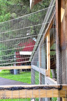 Life At Cobble Hill Farm: Chicken Coop