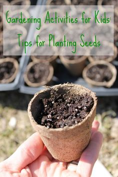Tips and tricks for planting seeds with kids! You will wish you read this BEFORE starting gardening activities with kids! www.HowWeeLearn.com