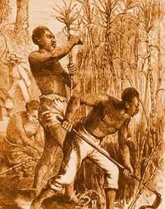 Slaves at work on the island early 1700s