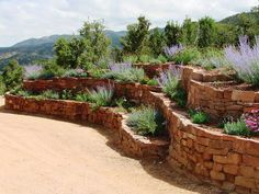 Image result for rock terrace yard