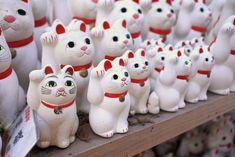 猫好き必見!招き猫だらけのお寺、世田谷「豪徳寺」