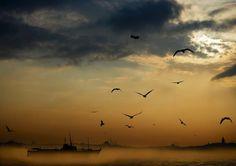 慢慢從晨曦中清醒的伊斯坦布爾海峽Istanbul/Boğaz景色。 ©Müslüm Bayezit