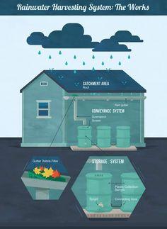 NAUKA: Gromadzenie wody deszczowej - Joanna Pracka - Projektowanie ogrodów by…