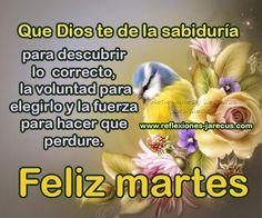 Feliz Martes, que Dios te de la sabiduría para descubrir lo correcto