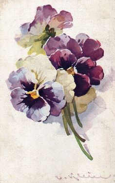 Watercolor Pansies (I think they are by Catherine Klein) Watercolour Painting, Watercolor Flowers, Painting & Drawing, Watercolors, Art Floral, Illustration Botanique, Botanical Art, Oeuvre D'art, Vintage Flowers