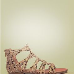 Steve Madden Gladiator Sandals - size 8 Worn less than 5 times, snake skin, gold accents Steve Madden Shoes Sandals
