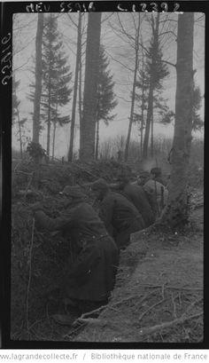La guerre dans les bois en Argonne : [photographie de presse] / Agence Meurisse - 1