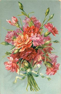 Bouquet of red, orange & pink carnations tied with light green ribbon ~1908