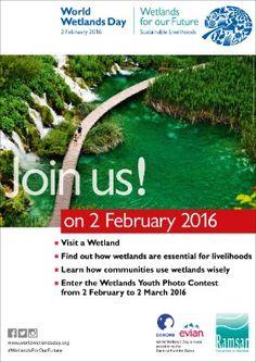 February 2 - World Wetlands Day World Wetlands Day, Future Days, International Day, Photo Contest, February, Community, Nature, Pageant Photography, Naturaleza