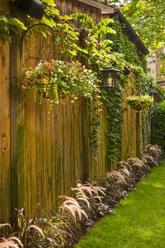 A wonderful way to soften a privacy fence or the length of the garage