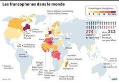 Le français n'est pas en déclin Why Learn French, Laurent Fabius, French Class, Infographic, Teaching, Education, Travel, Expressions, Countries