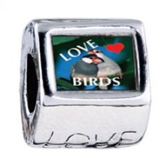 Love Birds Blue Photo Love Charms  Fit pandora,trollbeads,chamilia,biagi,soufeel and any customized bracelet/necklaces. #Jewelry #Fashion #Silver# handcraft #DIY #Accessory