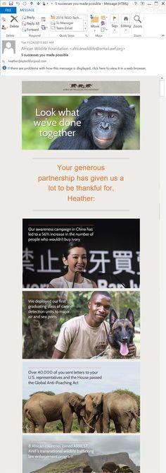 African Wildlife Foundation e-Newsletter