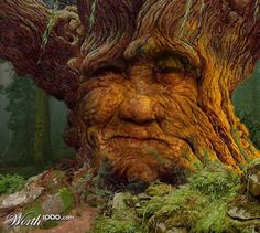 "A dryad is a tree nymph, or female tree spirit, in Greek mythology. In Greek drys signifies ""oak."" Thus, dryads are specifically the nymphs of oak trees, though the term has come to be used for all tree nymphs in general Tree People, Forest People, Tree Faces, Tree Carving, Unique Trees, Old Trees, Tree Photography, Ocean Photography, Weird Pictures"