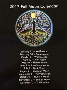 ☽The Moon☾