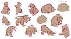 Bear Drawing, Gesture Drawing, Cartoon Sketches, Art Sketches, Animal Drawings, Drawing Animals, Sketch Painting, Children's Book Illustration, Animal Design