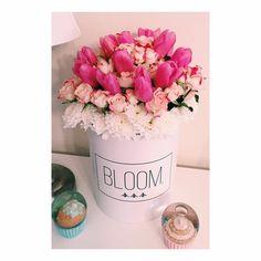 Tulip flowerbox. Flowerbox, cvijece u kutiji