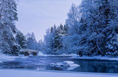 Zima, Park, Rzeka, Most, Ośnieżone, Drzewa