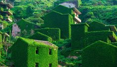 La naturaleza 'devora' un pueblo fantasma