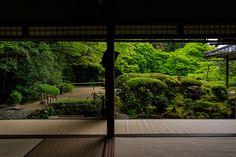 ツツジ咲く詩仙堂 : 花景色-K.W.C. PhotoBlog